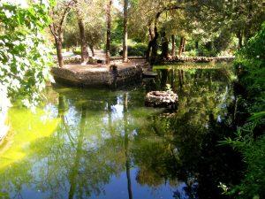 Parque de los Patos (Parque de María Luisa)